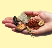 The Tradition of Chinese Herbs